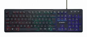"Multimedia toetsenbord met ""Regenboog"" backlight, zwart, US-layout"