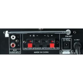 SkyTronic Karaoke Versterker FM/SD/USB/MP3