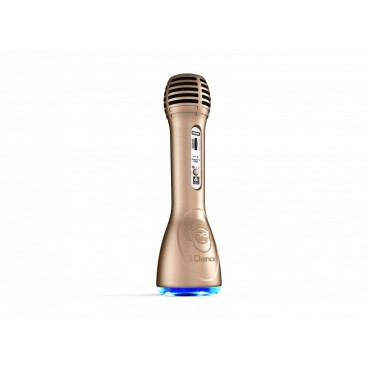 iDance PM-6Bluetooth Party Microfoon Goud
