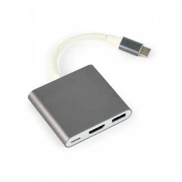 USB type-C multi-adapter 1XHDMI Female 1X USB A female