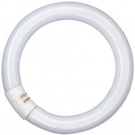 Sylvania circline 22w TL lamp